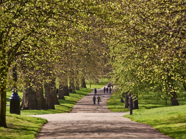 https://whereandwhenlondon.com/wp-content/uploads/2020/06/Green-Park-credit-The-Royal-Parks-0A1256D21B51-10-640x480.jpg